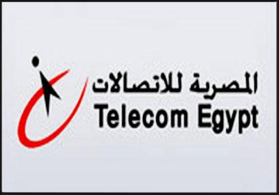 موقع المصرية للاتصالات فاتورة التليفون الارضى 2014