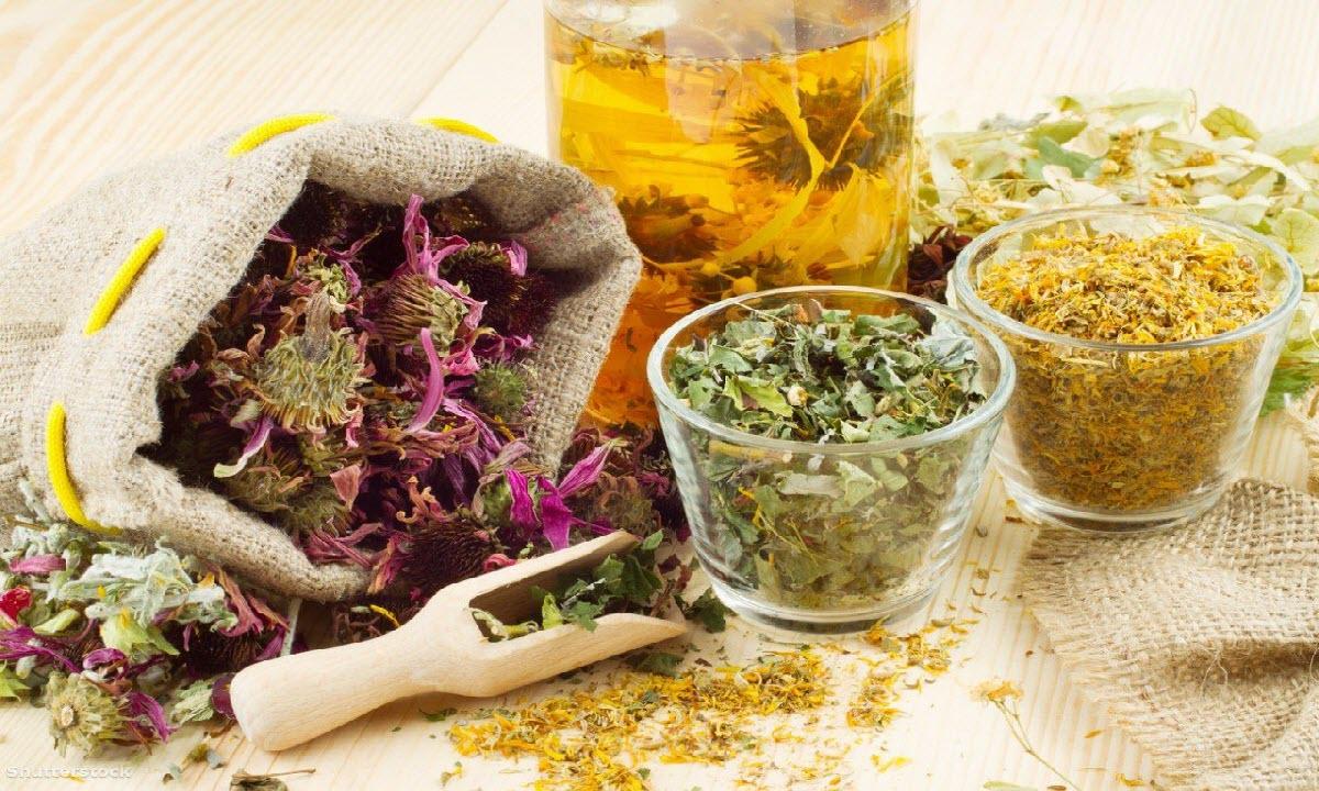 أعشاب طبيعية تغسل الكلى وتمنع الحصوات والفشل الكلوي 2