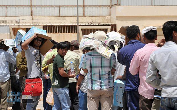 شاهد| اتحاد المصريين بالخارج يكشف مفاجأة صادمة بشأن العمالة المصرية في الخليج