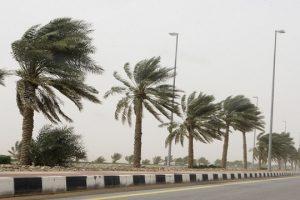 الأرصاد تؤكد.. هدوء سرعة الرياح وارتفاع درجات الحرارة وعودة الشبورة المائية وسقوط أمطار على المناطق التالية اليوم