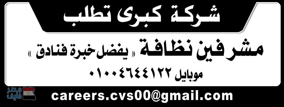 وظائف الصحف المصرية لجميع التخصصات والمؤهلات داخل وخارج مصر 7
