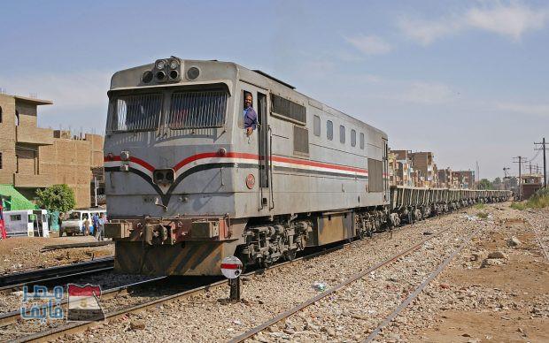 توقف قطار سوهاج – القاهرة لمدة نصف ساعة بسبب «خروف»