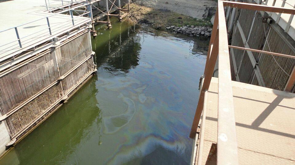 """ظهور """"بقعة زيت"""" على سطح نهر النيل.. والحكومة تعلن الطوارئ والعناية الألهية تتدخل لإنقاذ حياة المواطنين"""