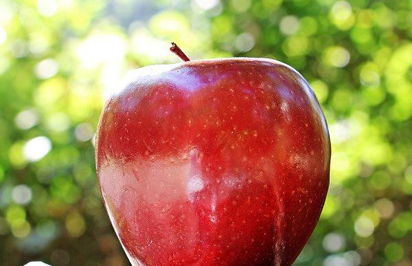 5 فوائد صحية للتفاح لم تكن تعرفها من قبل !