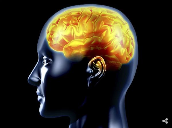 السبانخ يعزز الدماغ