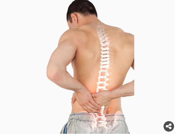 السبانخ يمنع هشاشة العظام