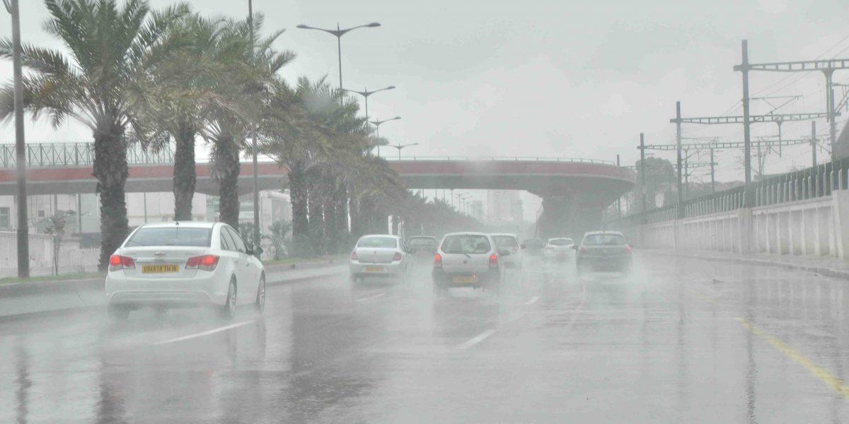 الأرصاد الجوية تحذر المواطنين وتؤكد أمطار رعدية وشبورة على المحافظات التالية غدا السبت