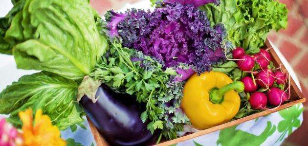 فواكه وخضروات فصل الربيع وفوائدها