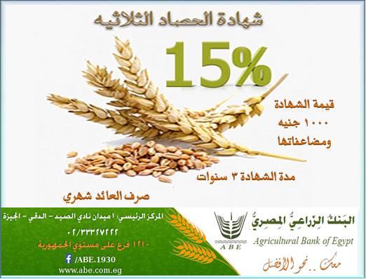 وظائف البنك الزراعي لخريجي الجامعات والأوراق وشروط وطرق التقديم علي الأنترنت 1