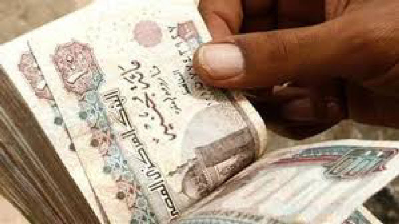 رسميا.. المالية تصدر قرار جديد بشأن أجور ومرتبات العاملين بالدولة