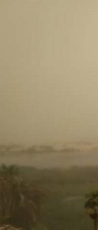 1 - حالا شاهد بالصور عاصفة ترابية قوية تضرب إحدى محافظات مصر.. وقرار عاجل بتأجيل الامتحانات حرصاً على سلامة الطلاب