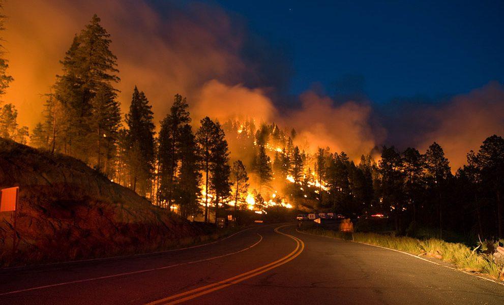 مناشدة السويد للاتحاد الأوروبي لإنقاذ حريق الغابات