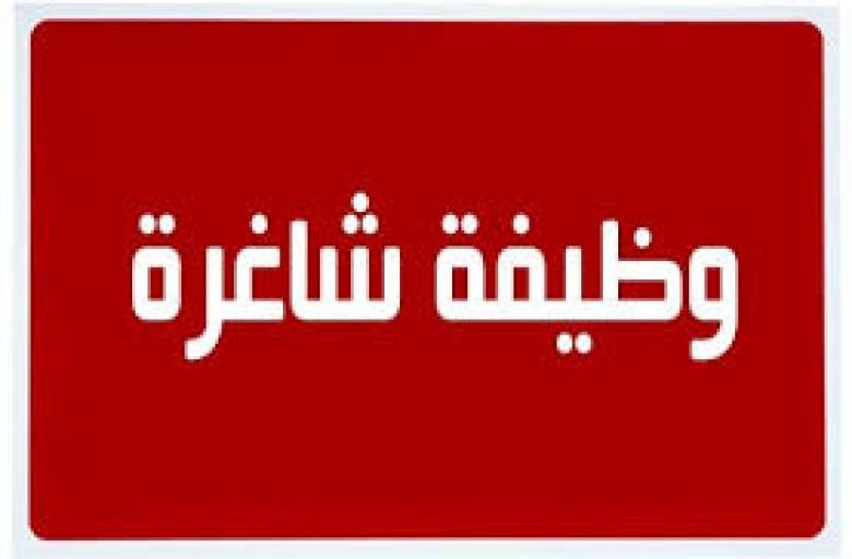 وظائف الحكومة المصرية بالتفاصيل وموعد التقديم والأوراق المطلوبة