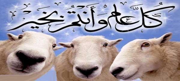 شروط الأضحية في الإسلام