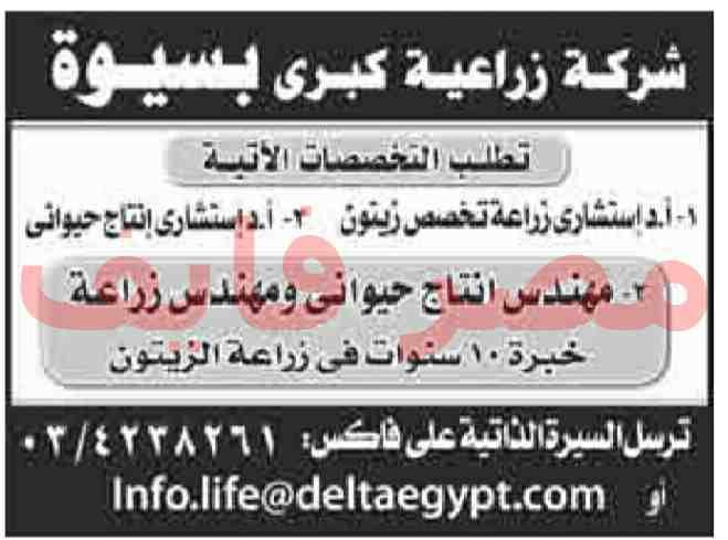 وظائف فى اهرام الجمعة 14/9/2018