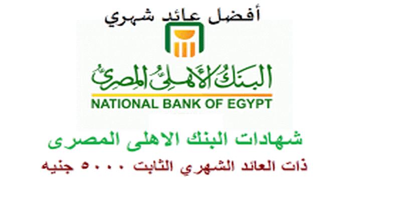 عاجل.. البنك الأهلي يطرح شهادة ذات عائد ثابت شهريًا.. وفائدة هي الأعلى في البنوك المصرية