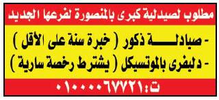إعلانات وظائف جريدة الوسيط اليوم الجمعة 26/10/2018 8