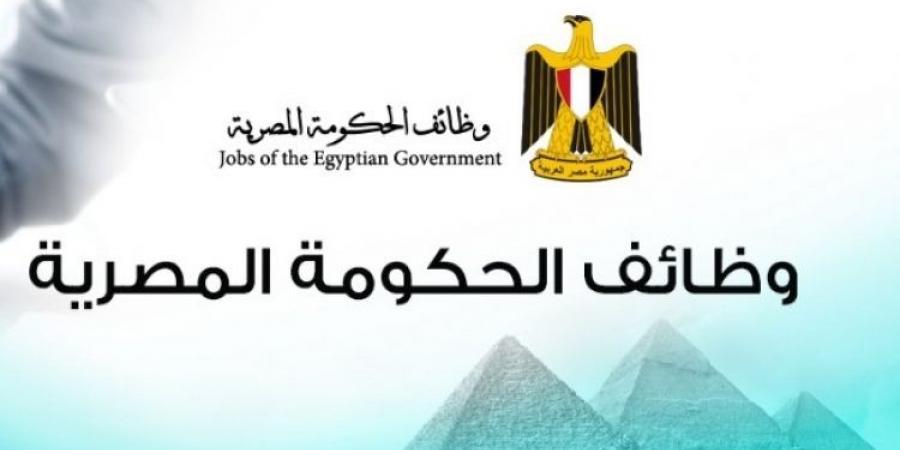 موعد فتح باب التعيينات الحكومية بقرار من مجلس الدولة .. وموعد التقديم