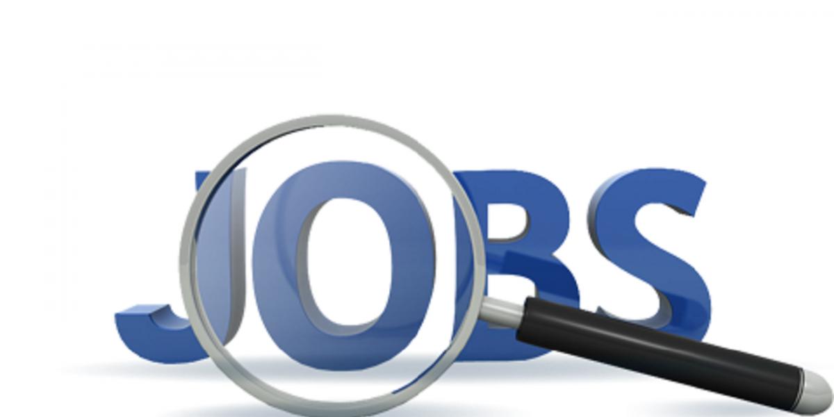 القوي العاملة تعرض 1809 وظيفة بمرتبات تصل الي 5000 جنيه