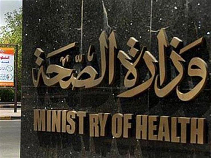 وزارة الصحة تكشف أساب انتشار الذباب خلال هذه الأيام وأمام توالده