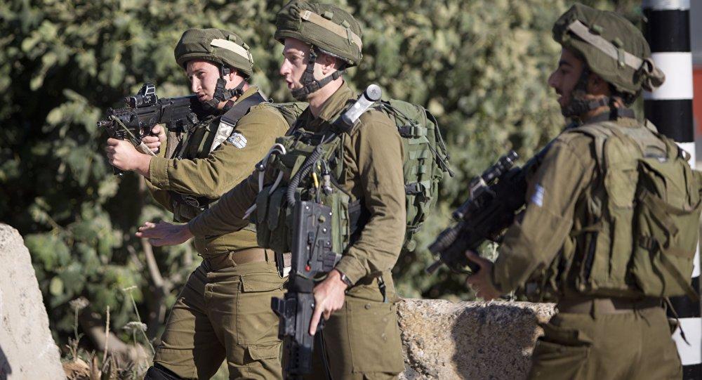 الجيش الإسرائيلي ينشر قططه الصحراوية النسائية على الحدود المصرية وموقع روسيا اليوم يكشف أسباب ذلك