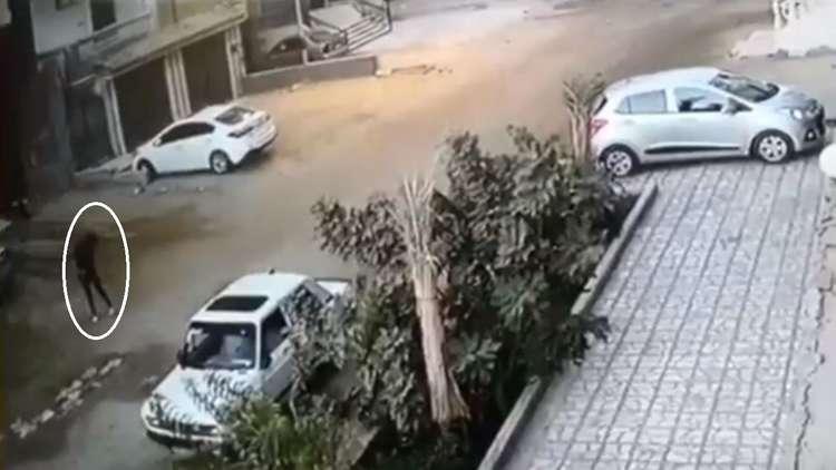 الأمن المصري يبحث عن سفاح مجهول يطعن الفتيات بأداة حادة