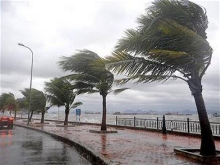 وزارة الزراعة تحذر من موسم ممطر يتخلله موجات صقيع