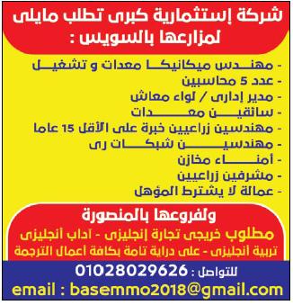 إعلانات وظائف جريدة الوسيط اليوم لجميع المؤهلات 18