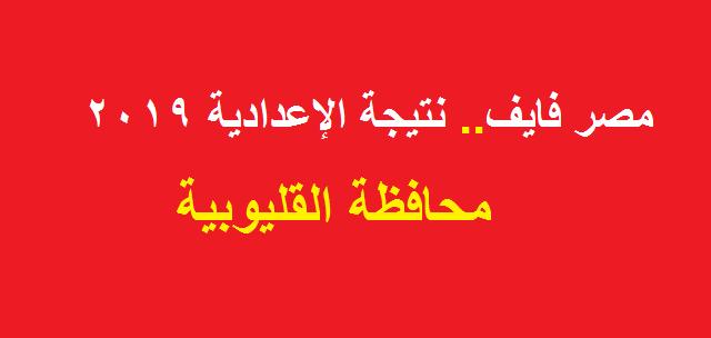 بالدرجات.. نتيجة الشهادة الاعدادية محافظة القليوبية 2019 الترم الثاني بالاسم فقط ورقم الجلوس