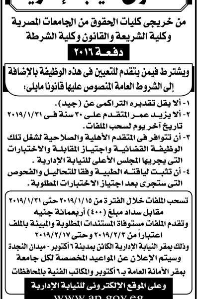 وظائف اهرام الجمعة مصر فايف 11/1/2019