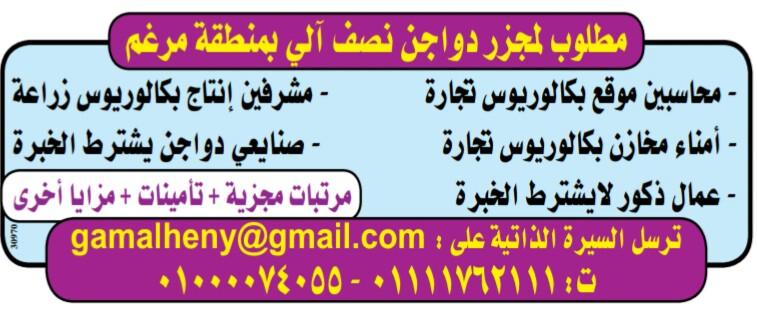 إعلانات وظائف جريدة الوسيط اليوم الاثنين 28/1/2019 18