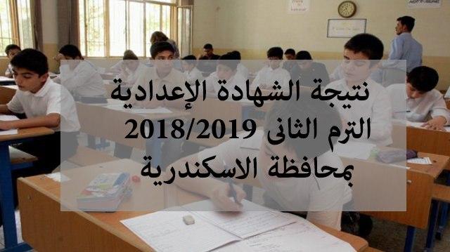 نتيجة الشهادة الابتدائية والإعدادية محافظة الإسكندرية 2019 برقم الجلوس