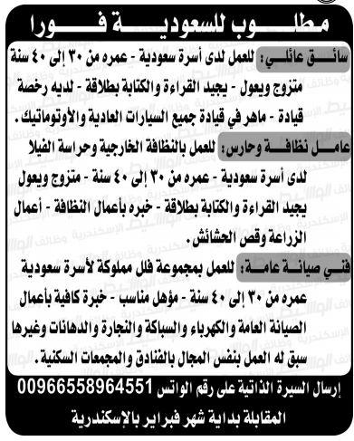 وظائف الوسيط الاسكندرية 21/1/2020 10