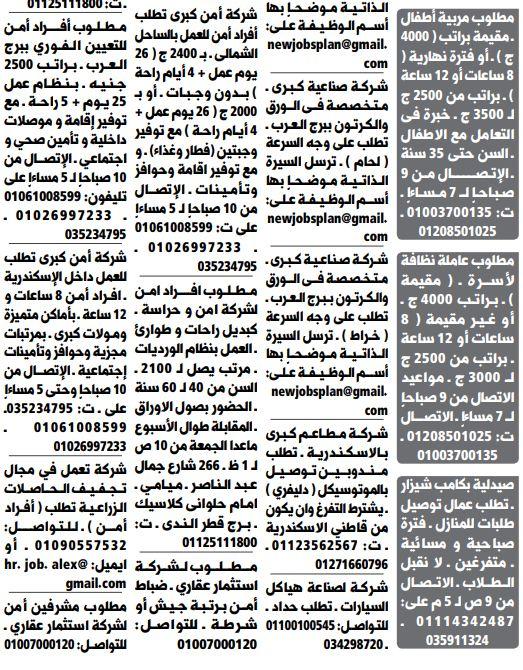 وظائف الوسيط الاسكندرية 21/1/2020 15
