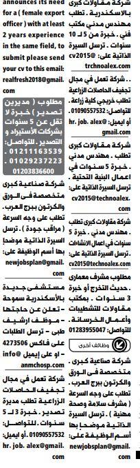 وظائف الوسيط الاسكندرية 21/1/2020 19