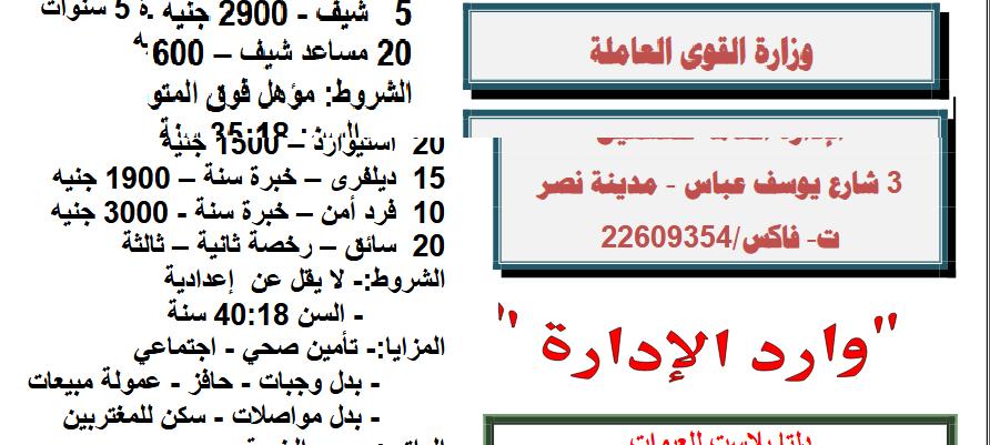 بـ 3700.. القوى العاملة تُعلن عن توفير 4 آلاف فرصة عمل داخل مصر.. الشروط والأوراق المطلوبة 1
