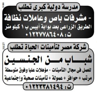 إعلانات وظائف جريدة الوسيط اليوم الاثنين 25/2/2019 18