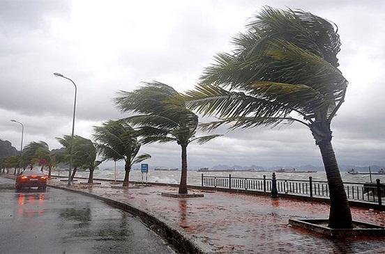 «البسوا تقيل» عواصف وأمطار رعدية تصل حد السيول.. الأرصاد تحذر من طقس الأسبوع المقبل