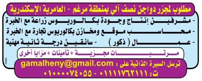 إعلانات وظائف جريدة الوسيط الإسبوعي لمختلف المؤهلات 35