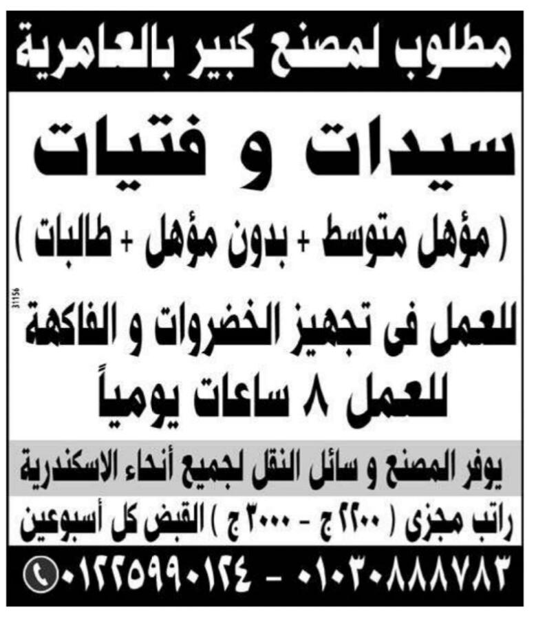 إعلانات وظائف جريدة الوسيط الإسبوعي لمختلف المؤهلات 25