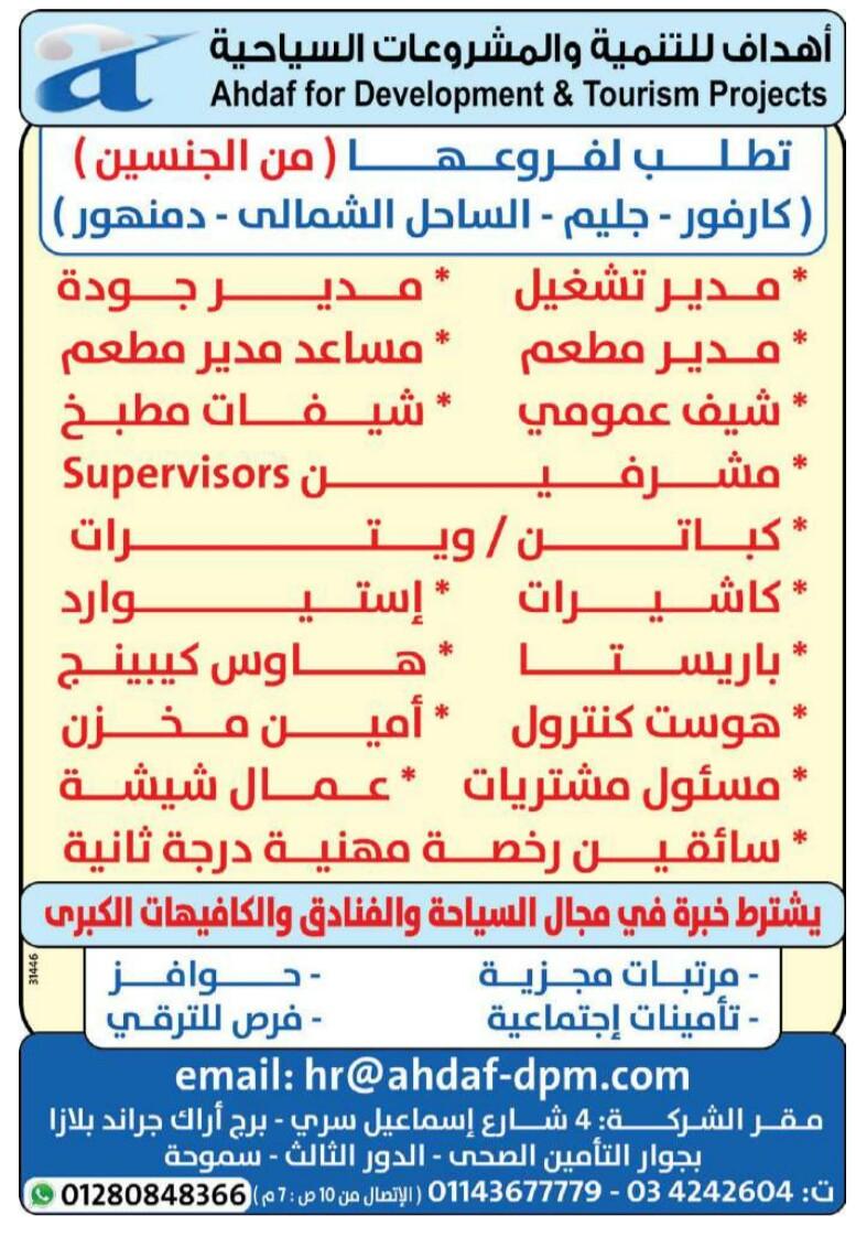 إعلانات وظائف جريدة الوسيط اليوم الاثنين 15/4/2019 23