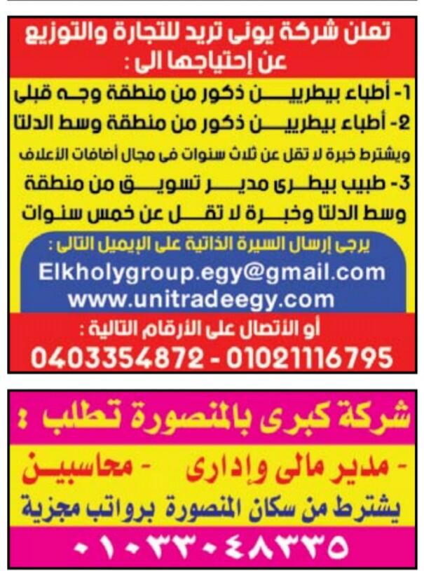 إعلانات وظائف جريدة الوسيط الأسبوعي 19