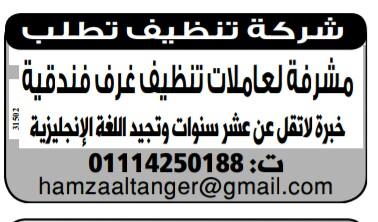 إعلانات وظائف جريدة الوسيط اليوم الاثنين 22/4/2019 11