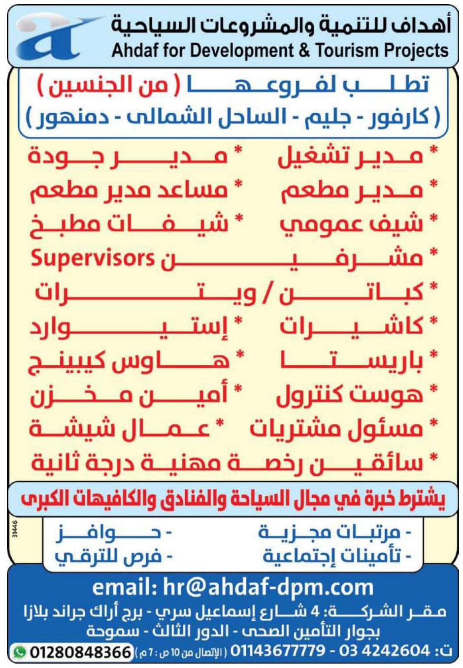 وظائف الوسيط الاسكندرية