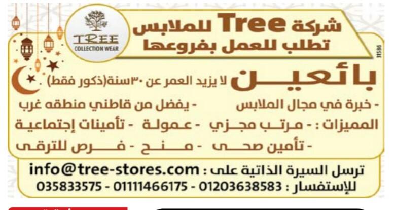 إعلانات وظائف جريدة الوسيط اليوم الاثنين 6/5/2019 11