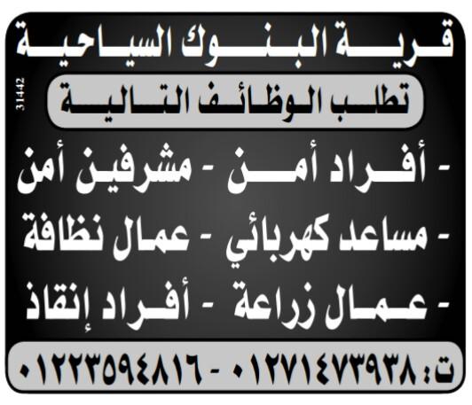 إعلانات وظائف جريدة الوسيط لجميع المؤهلات 11