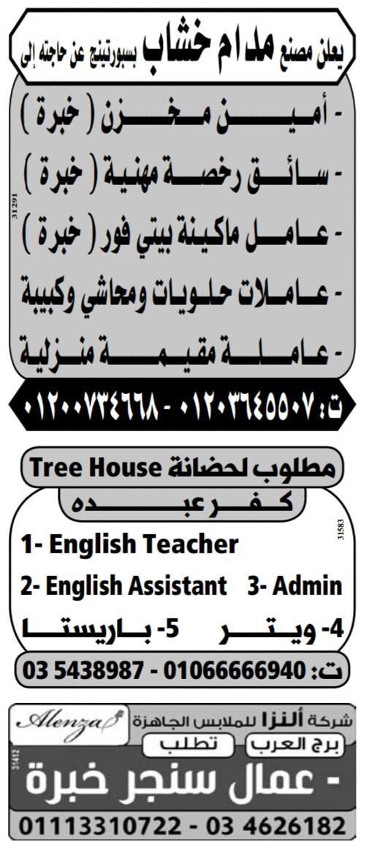 إعلانات وظائف جريدة الوسيط اليوم الاثنين 6/5/2019 4