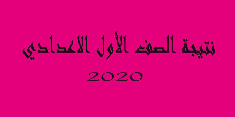 نتيجة الصف الأول الإعدادي 2020 الترم الأول رابط الإستعلام وكيفية الحصول على النتيجة من بوابة التعليم الأساسي