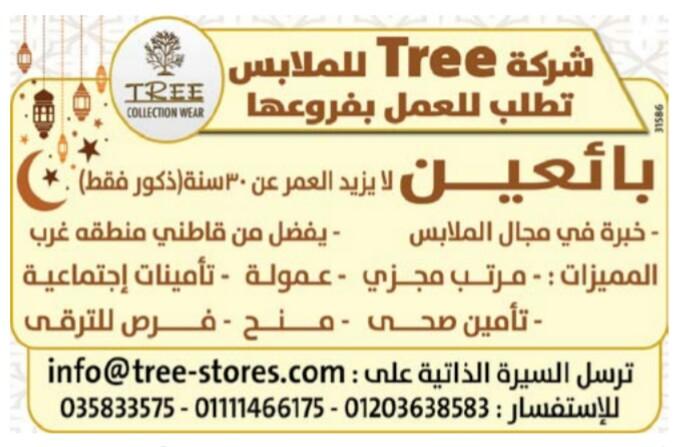 إعلانات وظائف جريدة الوسيط اليوم الجمعة 10/5/2019 16