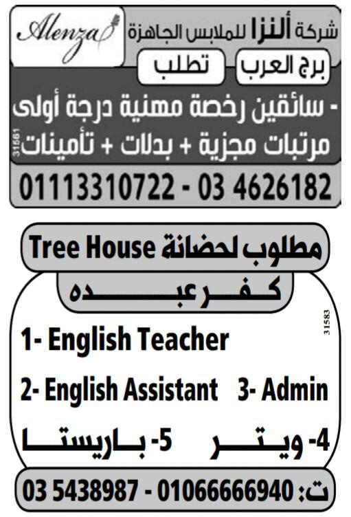إعلانات وظائف جريدة الوسيط اليوم الجمعة 10/5/2019 11